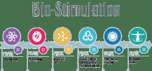 Bio-Stimulation Process